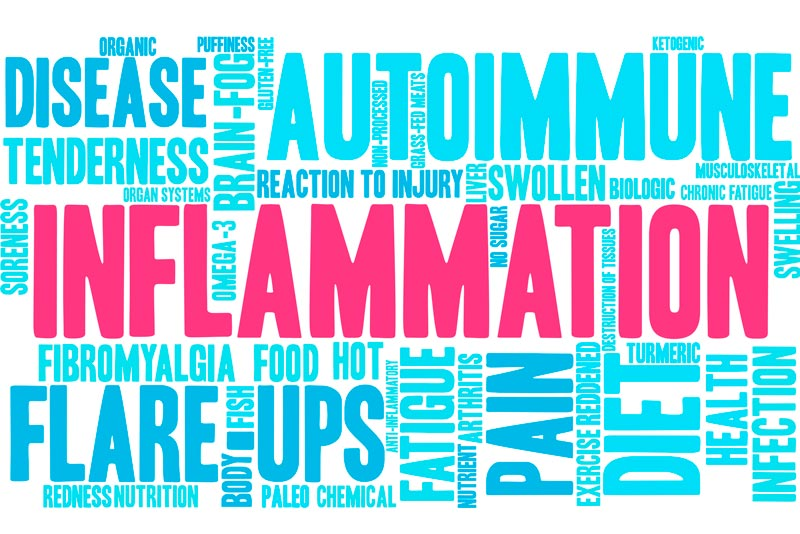 Episode 5: Inflammation, Cholesterol and Sugar